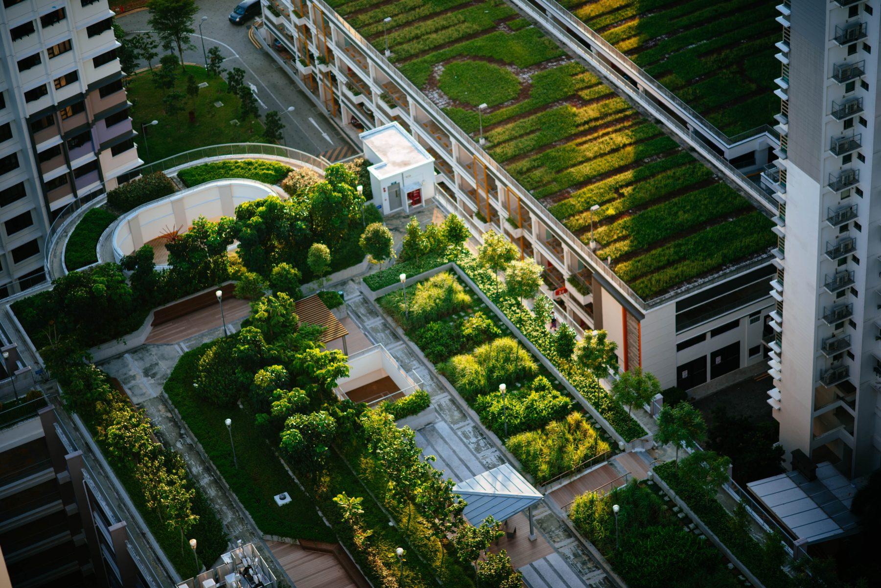 5 engagements clés pour accélérer la transition urbaine bas-carbone 1